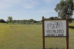 Willow Ridge Winery Vineyards Tour